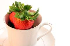 för jordgubbeteacup för porslin ny röd white Arkivbild