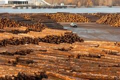 För journalbråte för stor timmer Wood flodstrand Columbia för bearbetningsanläggning Royaltyfri Bild
