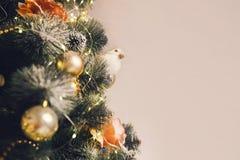 för julillustration för bakgrund härlig vektor för tree Royaltyfri Bild