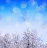 för juloklarheter för bakgrund ser blå lägre för kullar för lutning för flakes för färger sammansättning räknad horisontalmin por royaltyfri foto
