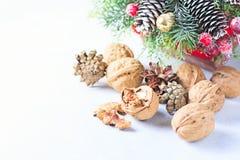 för julsammansättning för bauble blått exponeringsglas Sörja trädfilialer, sörja kottar, grankottar, muttrar Arkivfoton