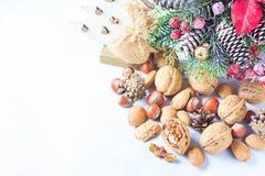 för julsammansättning för bauble blått exponeringsglas Sörja trädfilialer, sörja kottar, grankottar, muttrar Royaltyfria Bilder