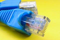 för kabelmakro för 45 bredband rj Arkivfoton