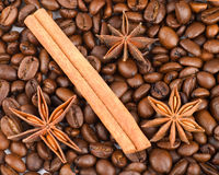 för kaffestjärnor för anise kanelbruna sticks Arkivbild