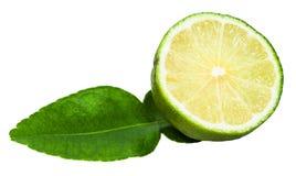 För kaffirlimefrukt för snitt grön frukt med det isolerade bladet Fotografering för Bildbyråer