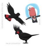 För kakaduatecknad film för papegoja australisk illustration för vektor Royaltyfri Fotografi