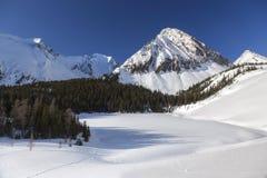 För Kananaskis för sikt för snöig kallt vinterlandskap scenisk kanadensare Rocky Mountains land royaltyfri foto