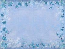 för kantblomma för blomning blå vinter Royaltyfri Fotografi