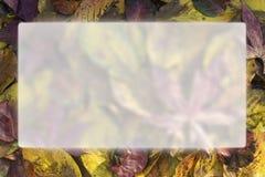 för kantram för höst blå sky för bladguld Royaltyfri Foto