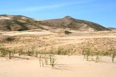 för kelso för Kalifornien ökendyner sand mojave arkivfoto
