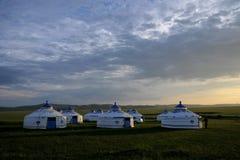 För Khan Mongolian för guld- hord för Mergel flodstrand stammar stäpp arkivfoton