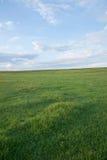 För Khan Mongolian för guld- hord för Mergel flodstrand stammar stäpp royaltyfri foto