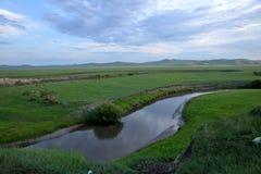 För Khan Mongolian för guld- hord för Mergel flodstrand stammar stäpp arkivbild