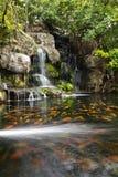 för koidamm för fisk trädgårds- vattenfall Arkivfoto