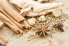 för kokkonstelement för tillsatser aromatiska kryddor för naturligt val för ingredienser för örtar för mat Aromatiska ingrediense Arkivbild