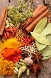 för kokkonstelement för tillsatser aromatiska kryddor för naturligt val för ingredienser för örtar för mat Royaltyfri Bild