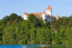 för konopistedamm för slott tjeckisk republik Royaltyfri Fotografi