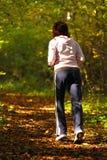 För korsland för kvinna gå trail i höstskog arkivbilder