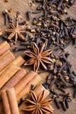 för kryddnejlikastjärna för anise kanelbruna sticks Arkivfoto