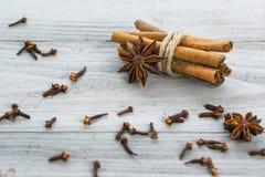 för kryddnejlikastjärna för anise kanelbruna sticks Royaltyfri Fotografi
