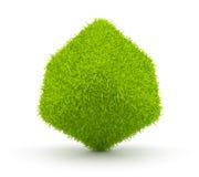 för kubmiljö för abstrakt begrepp 3d green för gräs Arkivfoto