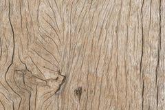 för kupatextur för bakgrund brunt trä Fotografering för Bildbyråer