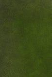 För lädertextur för grön färg bakgrund Fotografering för Bildbyråer