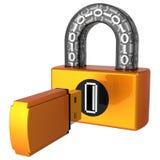 för låsres för data digital hög usb för säkerhet vektor illustrationer
