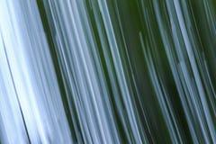 För lövverkabstrakt begrepp för rörelse suddig bakgrund för gräsplan för suddighet för natur Royaltyfria Bilder