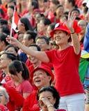 för ladyndp för 2009 flagga singapore våg Arkivbild