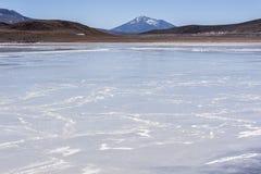 ` För lagun Laguna Honda för på engelska ` djup i den sudLipez Altiplano reservaen Eduardo Avaroa - Bolivia Royaltyfri Bild
