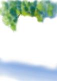 för lakefjäder för bakgrund grön tree för sommar Arkivbild