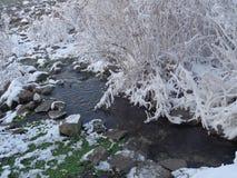 för landrests för dag frysa vinter för tree för snow Royaltyfria Bilder