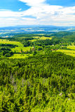 För landskapgräsplan för sommar inspirerande skog och berg Arkivbilder