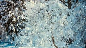 För landskapsikt för fantastisk saga magiskt träd för jul arkivfilmer