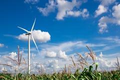 för lantgårdkälla för alternativ energi wind för turbin Fotografering för Bildbyråer