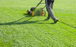 för lawngräsklippningsmaskin för bakgrund clipping isolerad white för bana royaltyfria bilder
