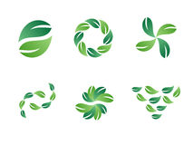 för leaflogo för designer grön vektor Royaltyfria Foton