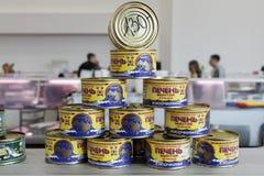 För leverlyrtorsk för tenn- cans som skivor för fisk naturliga står till salu royaltyfria bilder