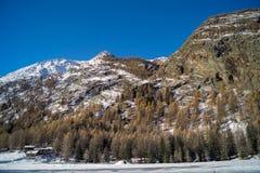 för liggandeberg för diagram 3d snow Royaltyfria Bilder