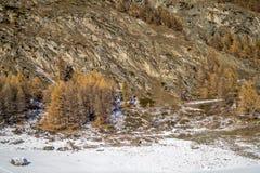 för liggandeberg för diagram 3d snow Fotografering för Bildbyråer