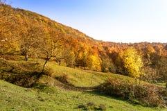 för liggandeberg för höst färgrik soluppgång Royaltyfri Foto