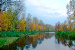 för liggandeflod för höst ljusa färgglada trees Royaltyfri Fotografi