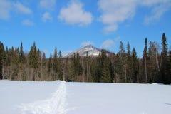 för ligganderussia för 33c januari ural vinter temperatur afton frost sun fotografering för bildbyråer