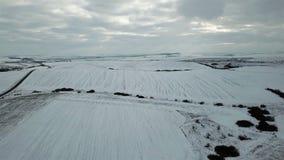 för ligganderussia för 33c januari ural vinter temperatur Fågelperspektiv av snö-täckte fält lager videofilmer
