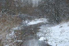 för ligganderussia för 33c januari ural vinter temperatur Floden bland buskarna arkivbilder