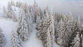 för ligganderussia för 33c januari ural vinter temperatur Flyg över träd som täckas med insnöat bergen arkivfilmer