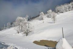 för ligganderussia för 33c januari ural vinter temperatur Härlig vinterplats i rumänska Carpathians Royaltyfri Foto