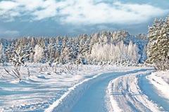 för ligganderussia för 33c januari ural vinter temperatur räknade snowtrees Royaltyfria Bilder