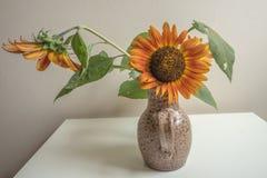 för livstid för solrosvase fortfarande vattenfärg Royaltyfria Bilder